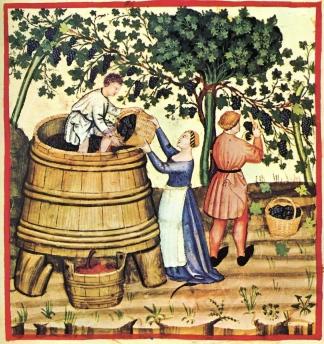 rotweinlese-spätmittelalter